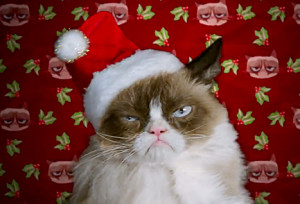 """""""Grumpy. Cat. Suppositories. Oh! I meant Supp-PAWS-itories."""""""
